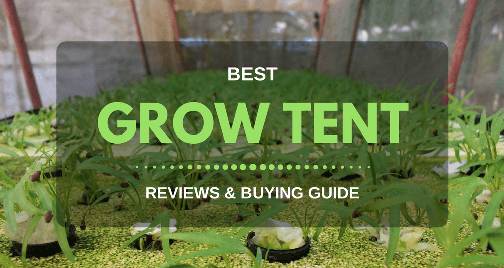 & 10 Best Grow Tents for The Money - 2018 Reviews u0026 Buying Guide