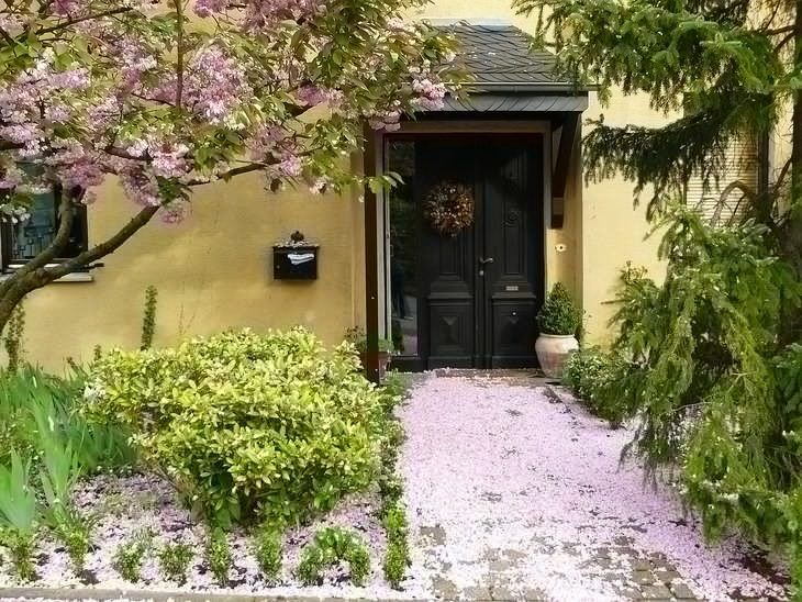 Beautiful home with a cherry tree at the entrance