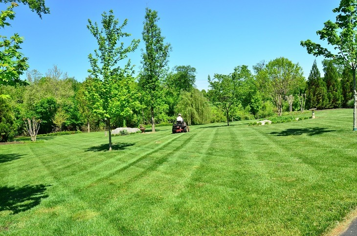Consider the size of your yard when choosing the right lawn equipment.