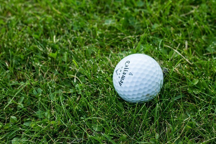 A naturally grown dense grass is the best golf playing surface