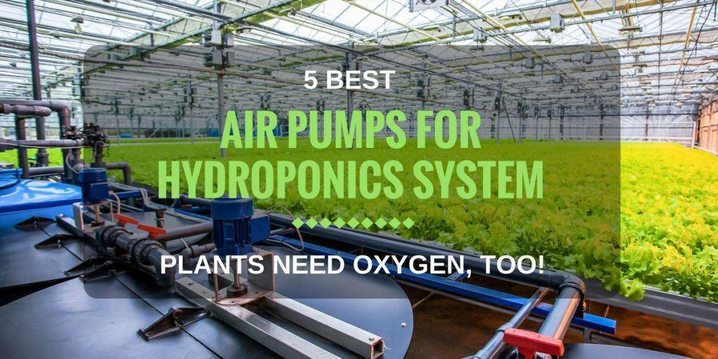 Best Air Pumps For Hydroponics-1
