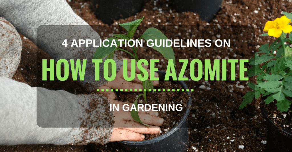 How to Use Azomite in Gardening