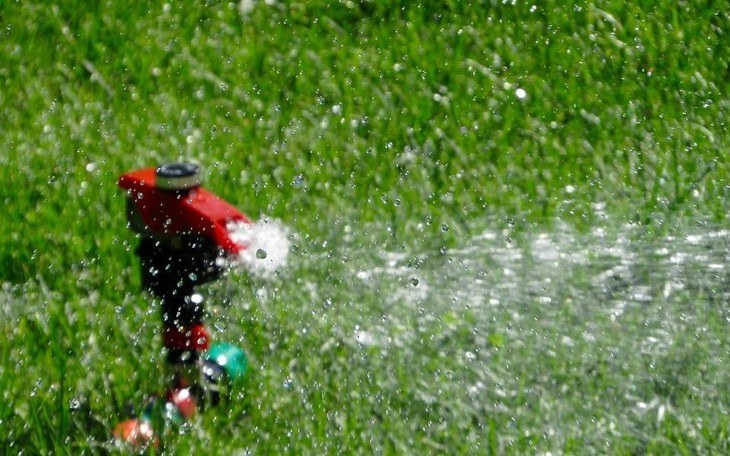 showering water all over the lawn to soften the soil