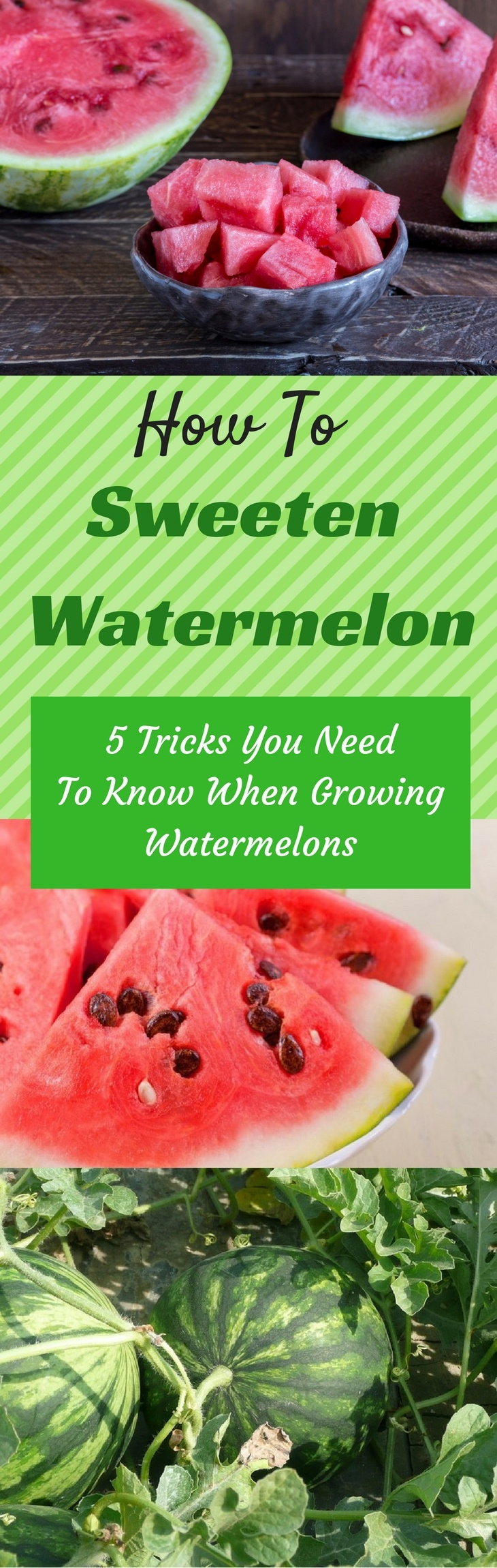 How To Sweeten A Watermelon - pin it
