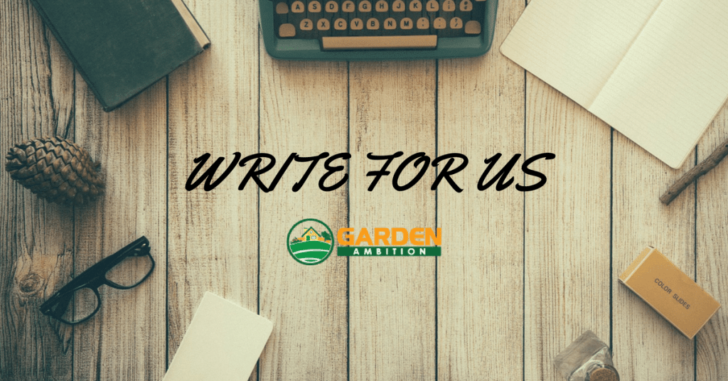 Want To Write A Guest Post For Us
