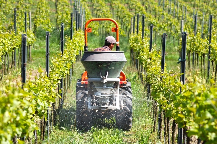 A farmer using a tractor in the well-kept vineyard