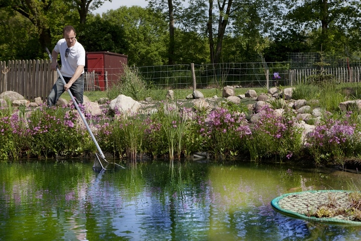 There can be countless of ways in cleaning a pond