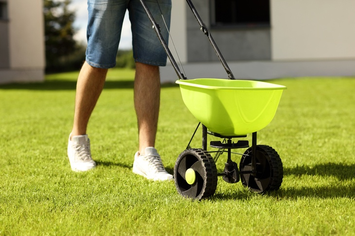 A young man uses a drop spreader to scatter seeds across his lawn.