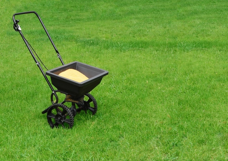 Adding the right amount of fertilizer to your lawn will help grow lush, green grass.