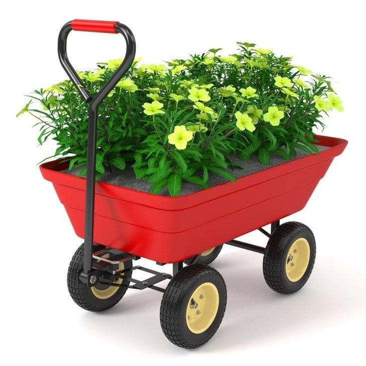 An example of a dump cart carrying a flower bed which makes gardening easier.
