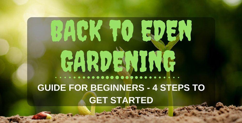 Back To Eden Gardening
