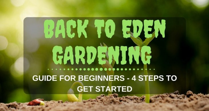 Back To Eden Gardening Method Guide For Beginners – 4 Steps To Get Started!