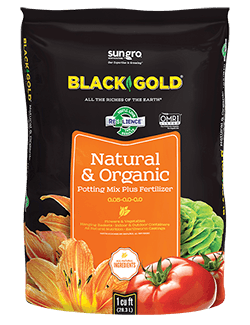 Black Gold All Organic Potting Soil