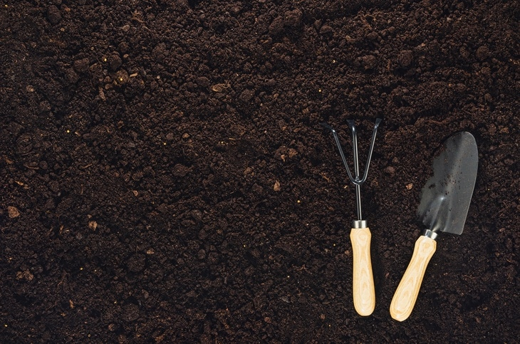 Close up shot of soil on the ground along with a pair of gardening tools (1)
