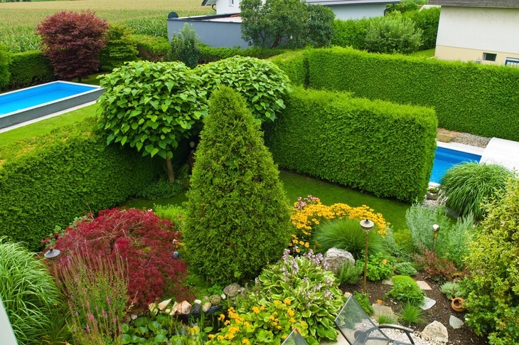 Low-growing shrubs are perfect for front yards.