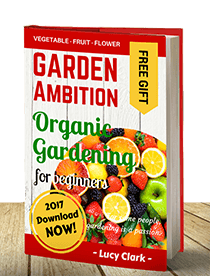 Organic Gardening for Beginners Ebook Cover V2