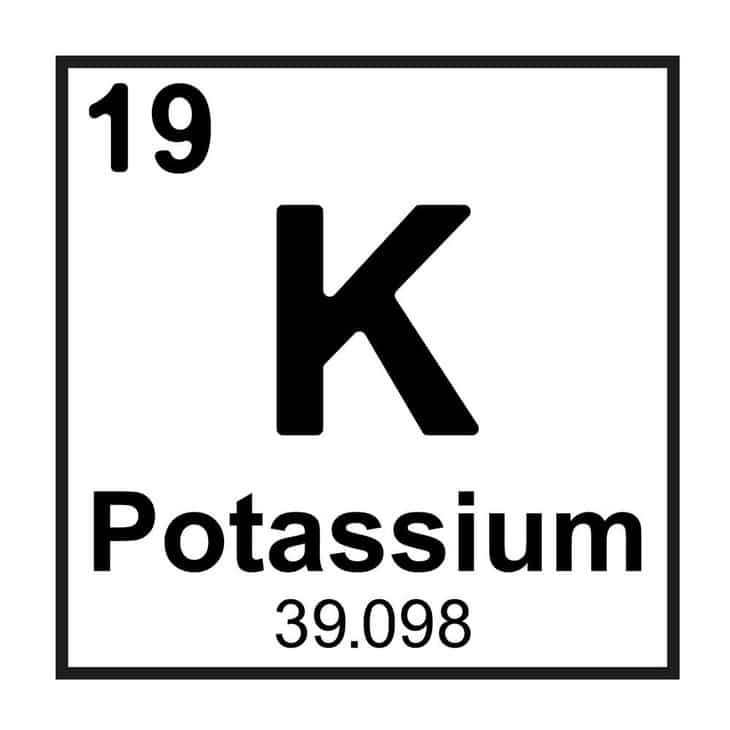 Potassium content in fertilizers plays a role in plant performance and maintenance - best fertilizer for tomatoes