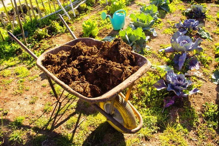 Transport your garden fertilizer in one go using a wheelbarrow