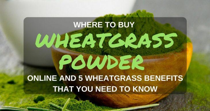 where to buy wheatgrass