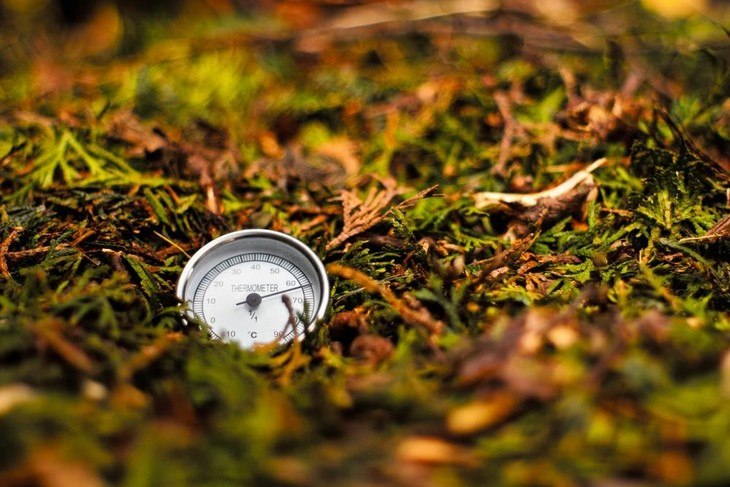 A compost thermometer is a good investment if you plan to make organic compost for the long term