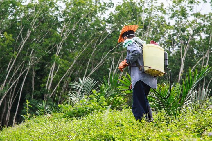 Backpack sprayers can be used in areas that can't be reached by motorized spra - best backpack sprayer