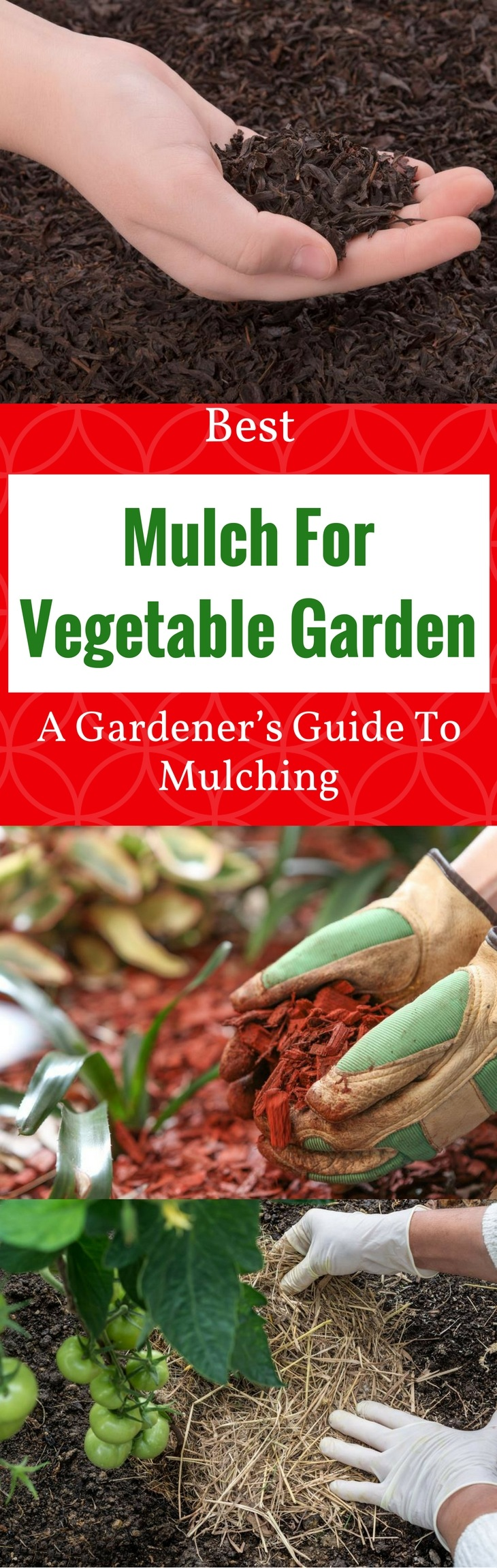 Best Mulch For Vegetable Garden 2018 A Gardener S Guide To