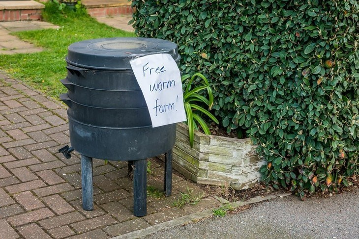 Giving free worm bin can encourage people to start their own vermicompost