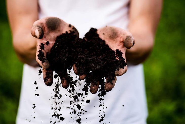 Organic composts are healthy and well-balanced nutrients that are a great addition to your garden soil