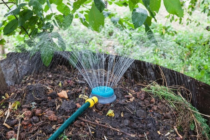 Sprinkle some water into your compost to moisten the organic materials