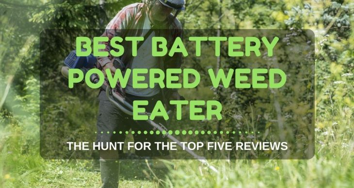 Best Battery Powered Weed Eater The Hunt For The Top Five