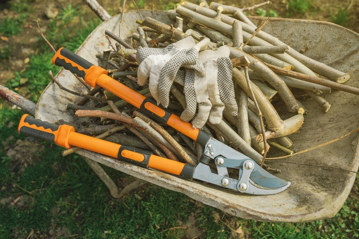 Compound loppers are reliable tools for tough pruning activities