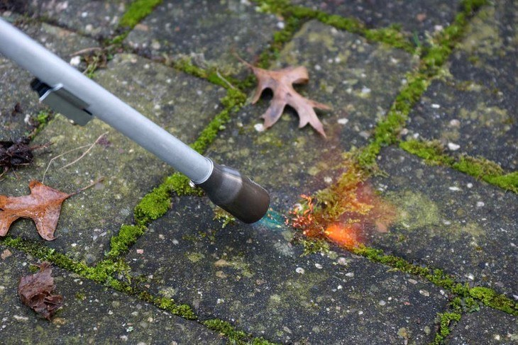 A propane torch can reach the smallest corners where weeds can grow