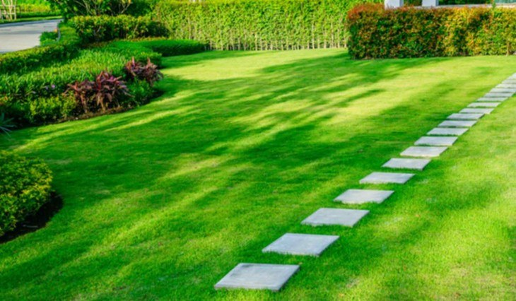 A well-maintained lawn with a beautiful landscape