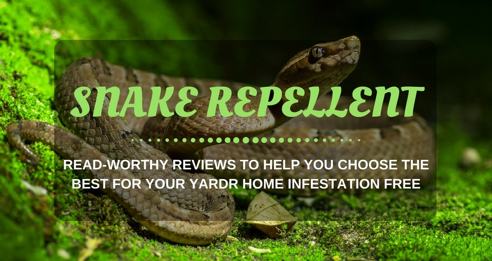 What Is The Best Snake Repellent On The Market – Best For Yards Reviews and Buying Guide