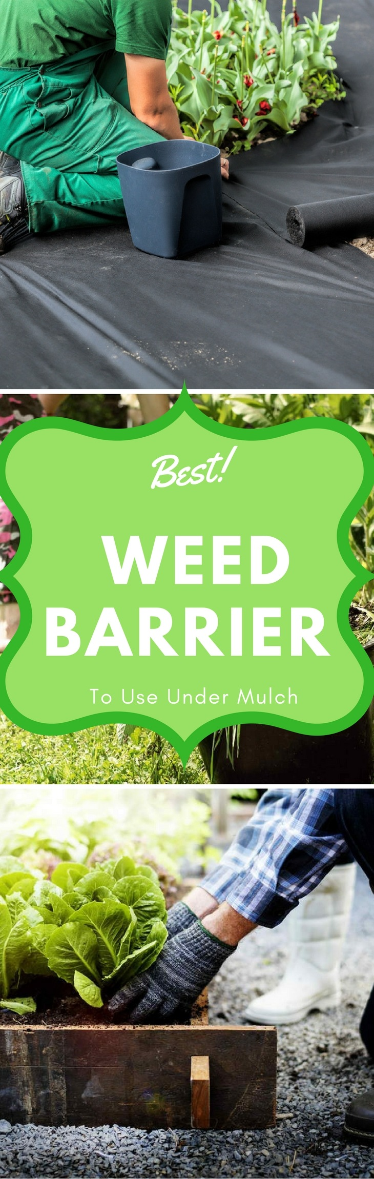 Best Weed Barriers pin it