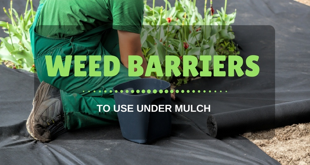 Best Weed Barrier To Use Under Mulch For Garden 2018 Reviews