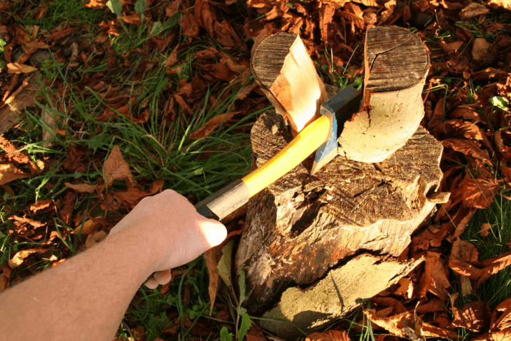 Log splitting is the basic manner of gathering firewood.