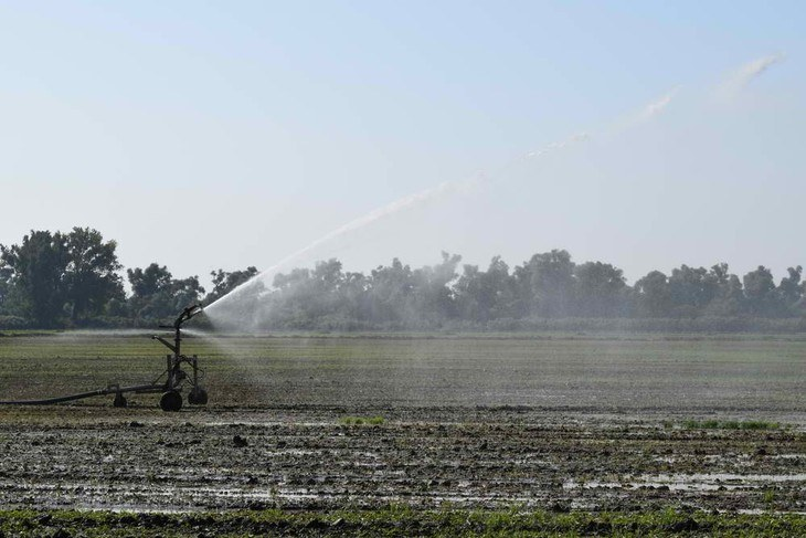 Other variations of traveling sprinklers can also be used for sports and farm fields