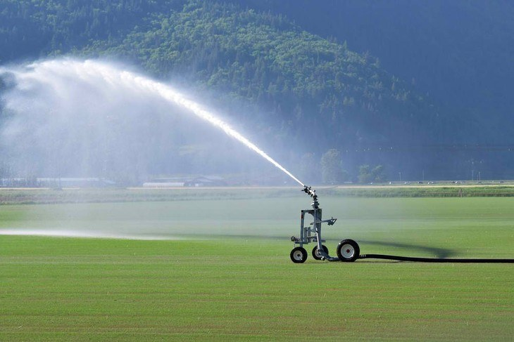 Traveling or walking sprinklers are ideal for large lawns