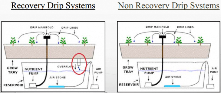 2 Types of Drip Systems