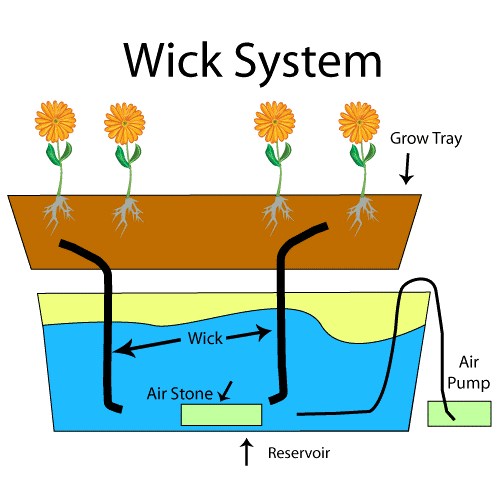Low Technology Hydroponics Wick System For Beginners 2018