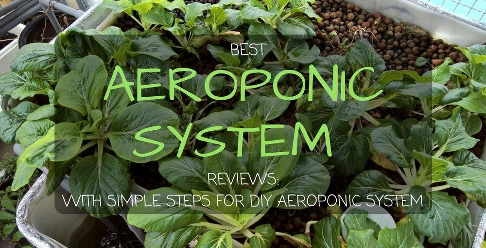 best aeroponic system reviews for 2018 with simple steps for diy