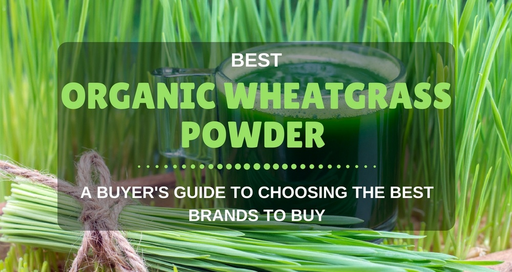 BEST WHEATGRASS ORGANIC POWDER