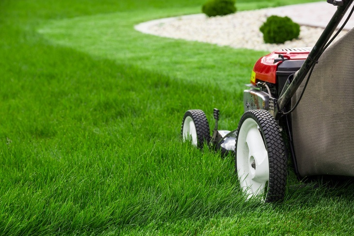 Cutting of lawn grass is an important task to maintain cleanliness in the yard