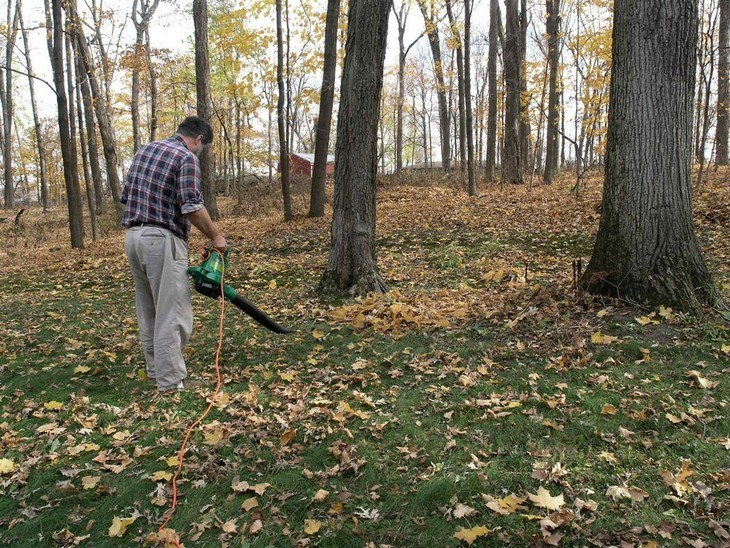 Best Blower Mulcher Vacuum 2018 Reviews And Buyer S Guide