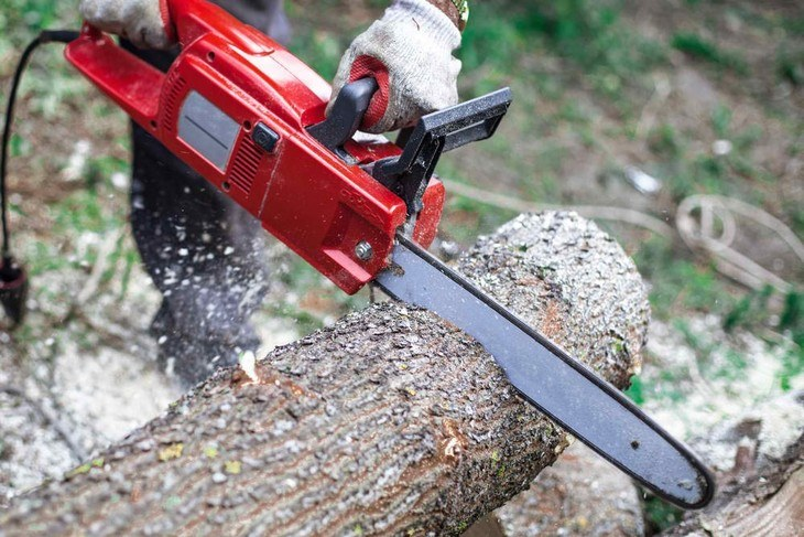Electric chainsaws are lightweight machines designed for tackling light-duty cutting jobs
