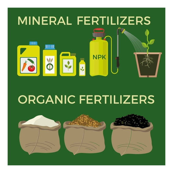 Organic fertilizers usually come in powder forms