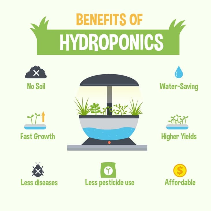 a description of the advantages of producing crops through use of hydroponics Advantages of hydroponics farming some of the major benefits of hydroponics include: lack of toxins, using less water, less space, less nutritional matter, early harvesting, elimination of soil born diseases and also provides steady production rates.