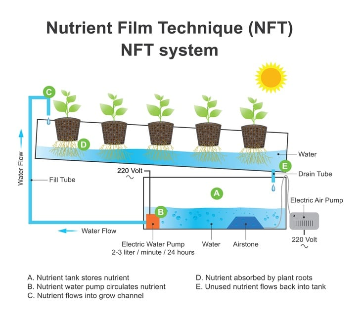 The system works through providing a slow and steady stream of water down to the plant's roots