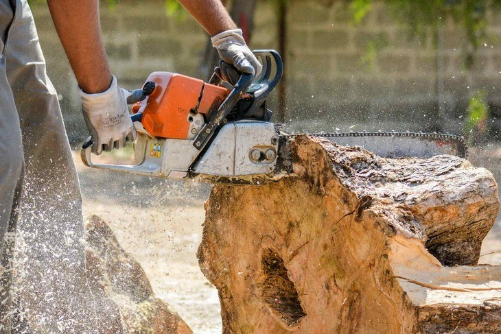 Your choice of a chainsaw will depend on the size of wood you want to cut. Some are designed for light duty cutting while others are for heavy duty jobs
